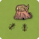 螞蟻世界模擬器